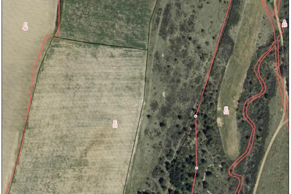 cartographie agriculture SIG GPS carte carto plan parcelle agricole surface superficie couleur culture arboriculture cadastre exploiation limite jalon jalonnage limite propriété