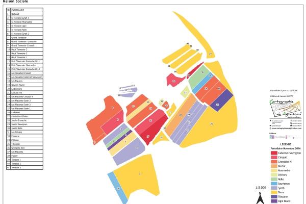 agriculture GPS carte carto cartographie parcelle agricole SIG plan surface superficie couleur culture cépages vigne viti viticulture exploitaiton