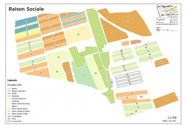 agriculture GPS carte carto cartographie parcelle agricole SIG plan surface superficie couleur culture fruits et légumes maraîchage cadastre exploiation